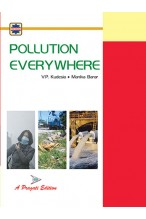 POLLUTION EVERYWHERE